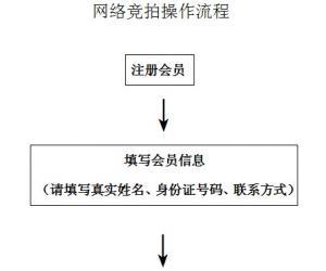 网络竞拍操作流程