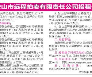 马鞍山市远程拍卖有限责任公司第586期拍卖公告
